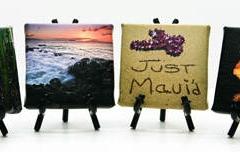 Canvas Minis