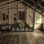 Kamoi | Scott Mead Photography