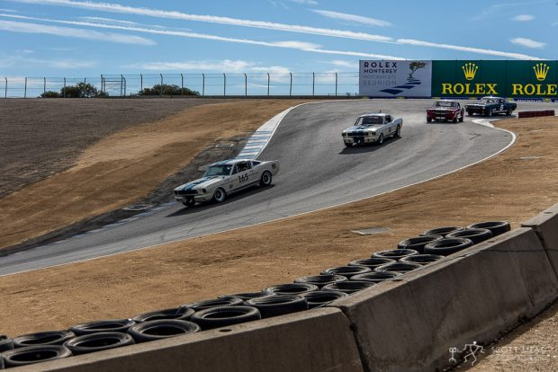 A Herd of Shelby Mustangs Winds through Turns 8 and 8A at Mazda Raceway Laguna Seca