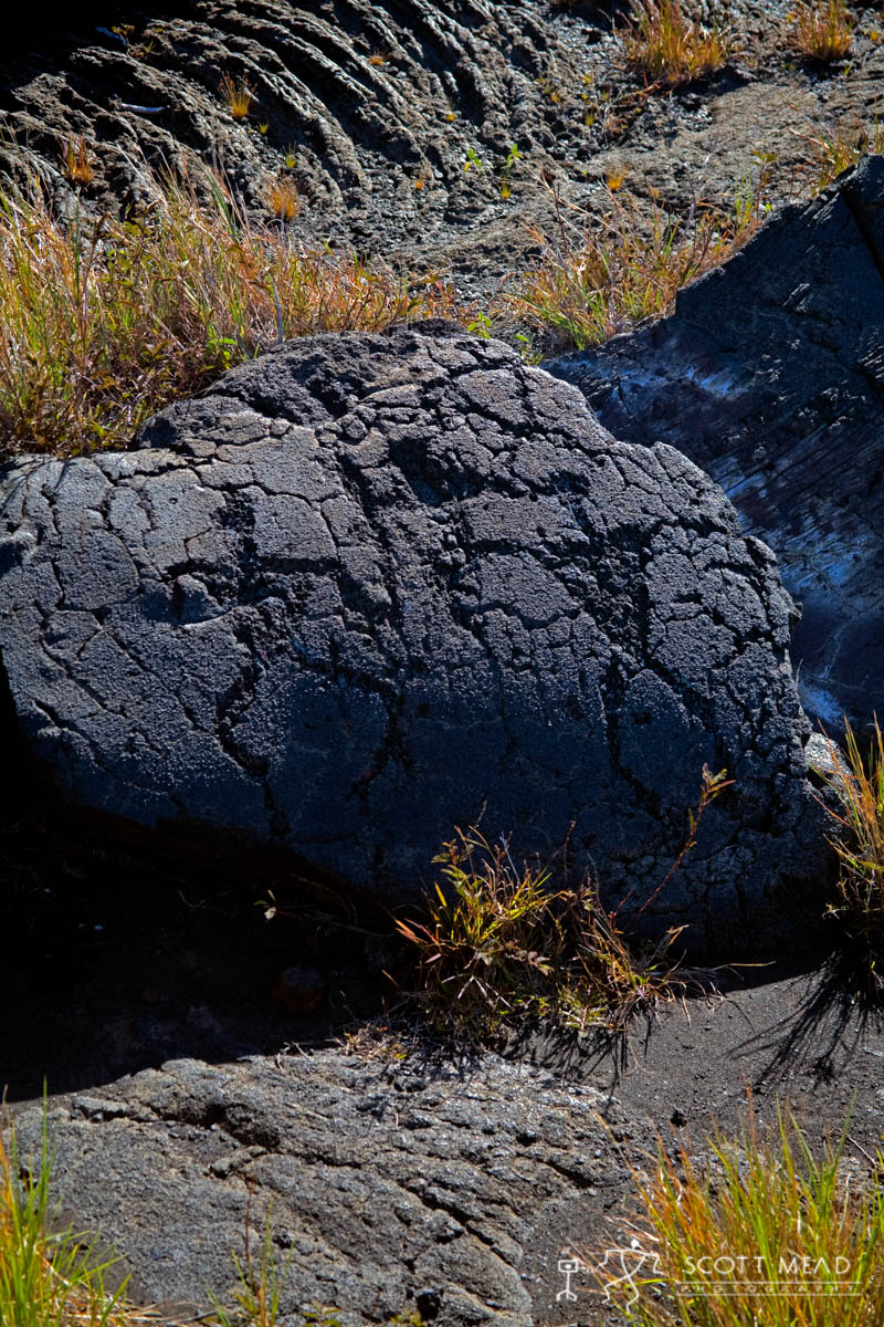 Scott Mead Photography | Family Petroglyph
