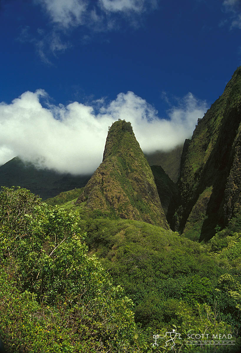 Scott Mead Photography | Iao Needle