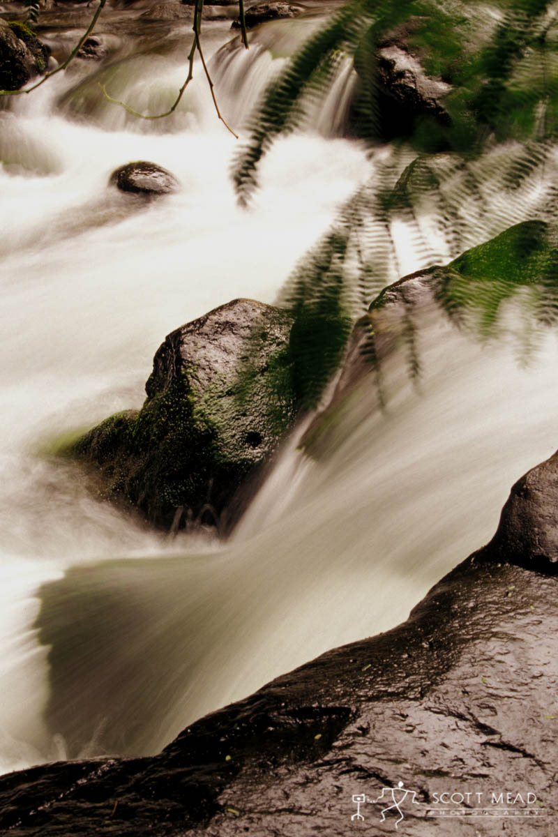 Scott Mead Photography | Iao Stream 1