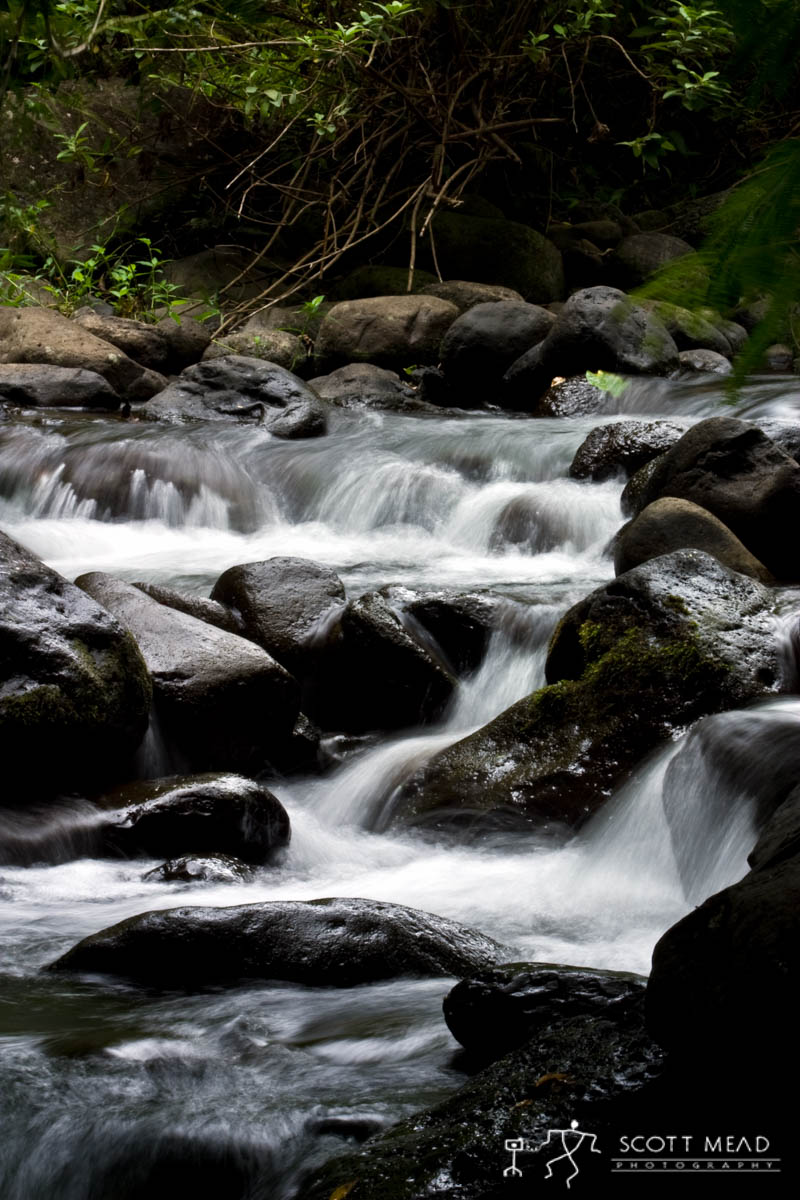 Scott Mead Photography | Iao Stream 2