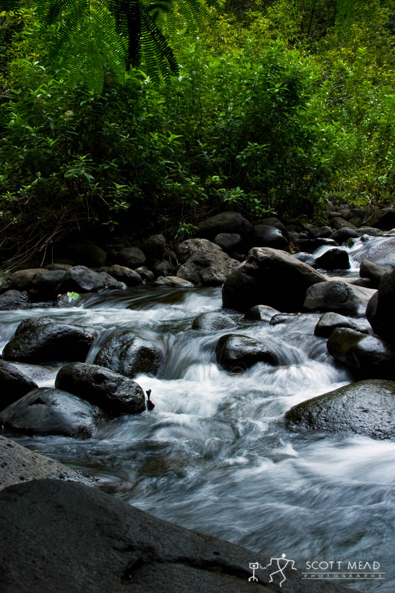 Scott Mead Photography | Iao Stream 3