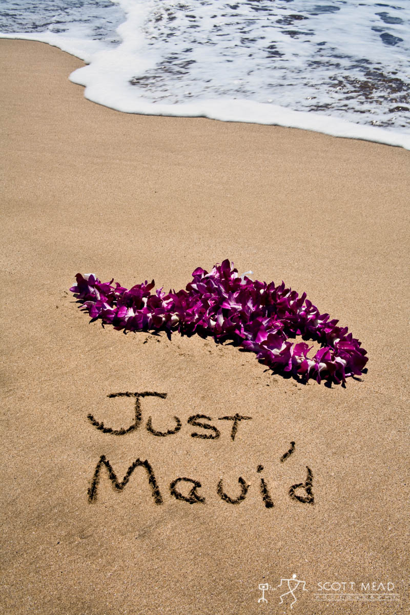 Scott Mead Photography | Just Maui'd