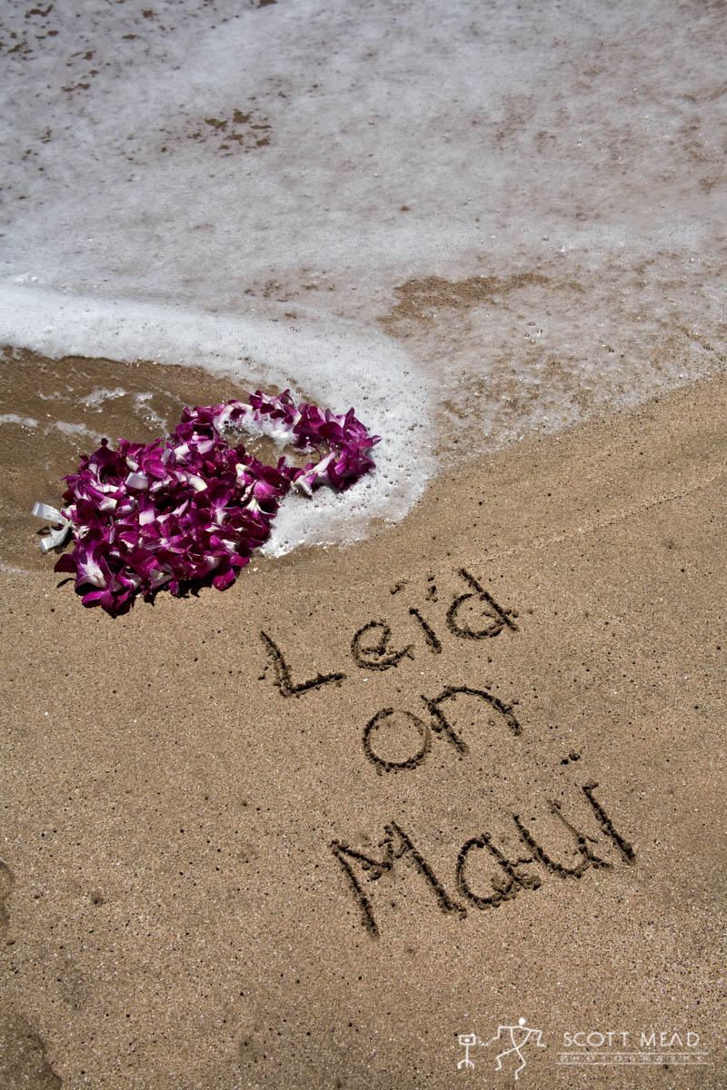 Scott Mead Photography | Leid on Maui