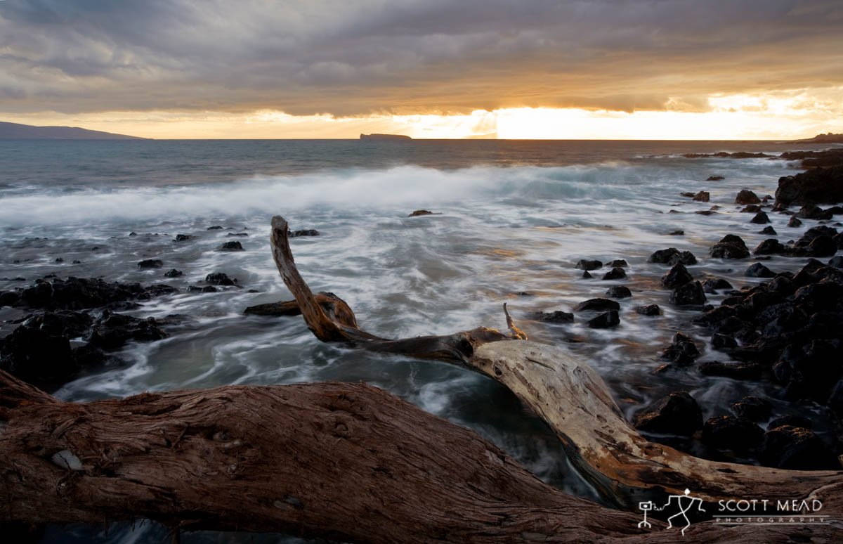 Scott Mead Photography | Makena
