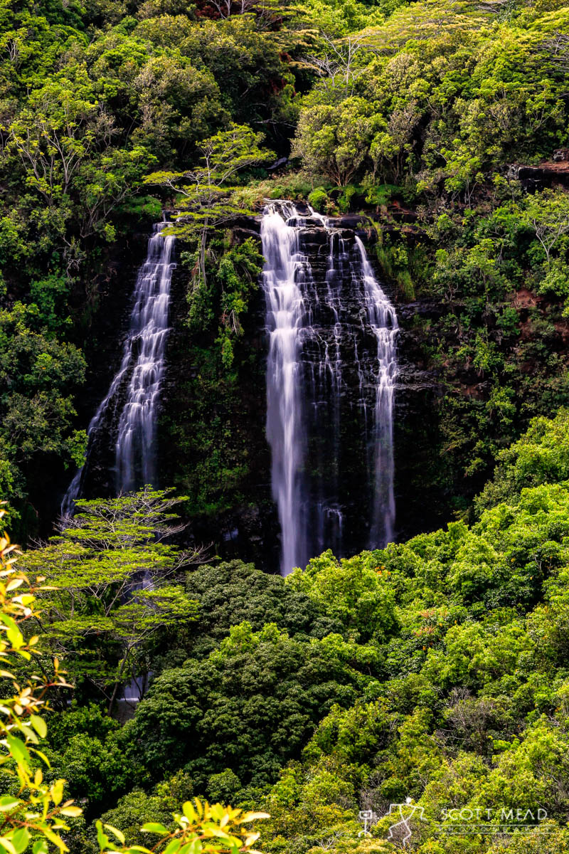 Scott Mead Photography | Opaekaa Falls