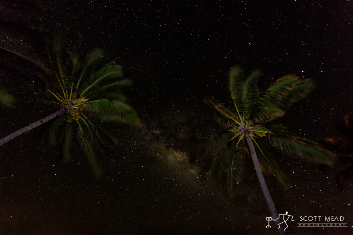 Scott Mead Photography | Paradise Nights