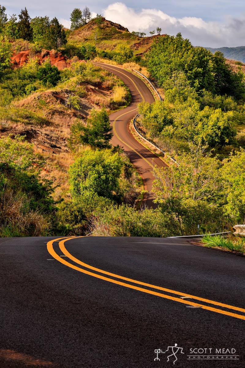 Scott Mead Photography | Road to Waimea