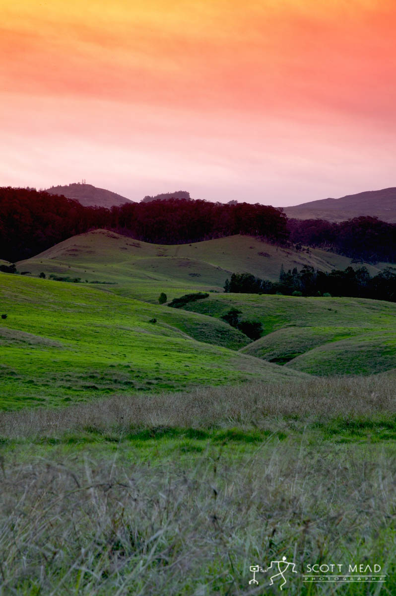 Scott Mead Photography | Upcountry