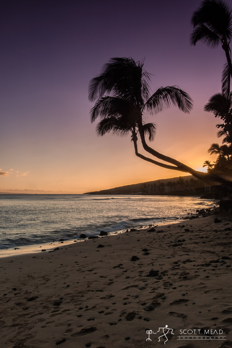 Scott Mead Photography | Maalaea Dreaming