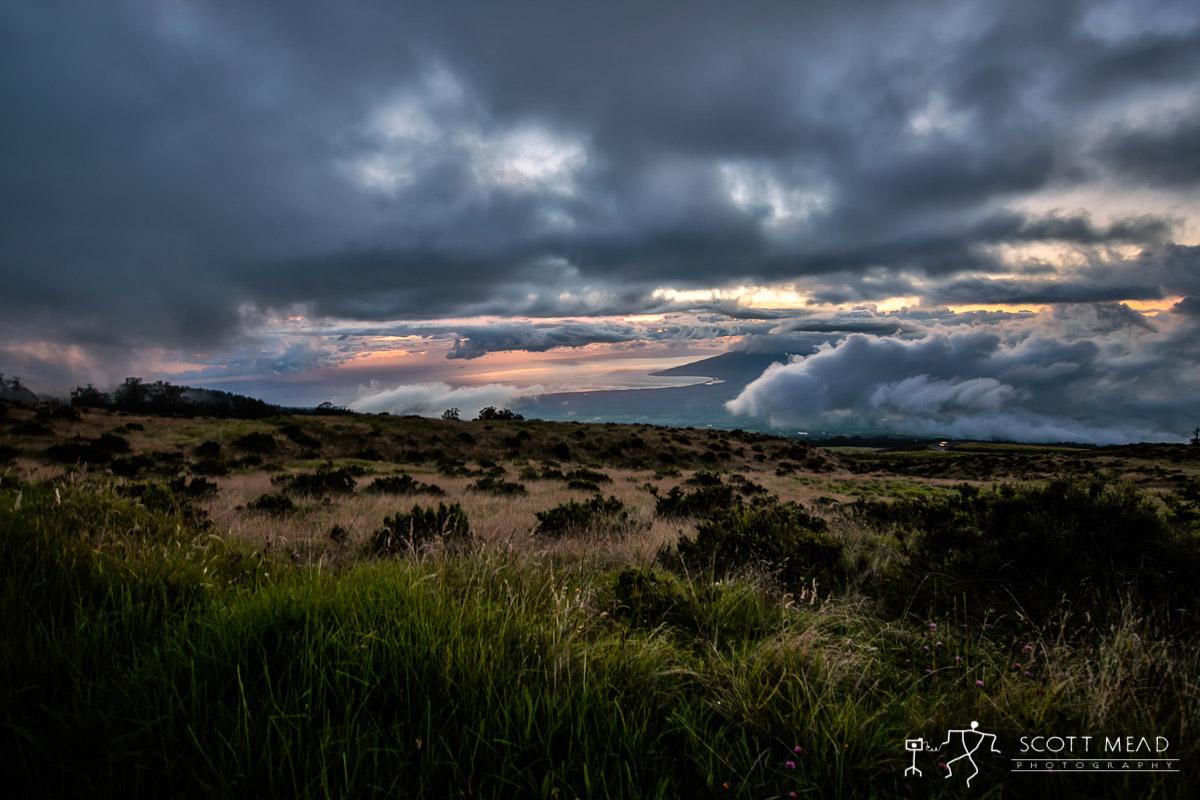 Scott Mead Photography | Welo Hea