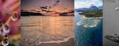 The Hawaiian Winter Wonderland